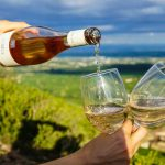 Wineries in Ventura County