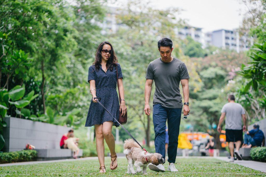 Couple at dog park in Westlake Village