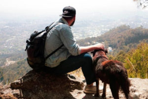 Dog on a hike in Westlake Village