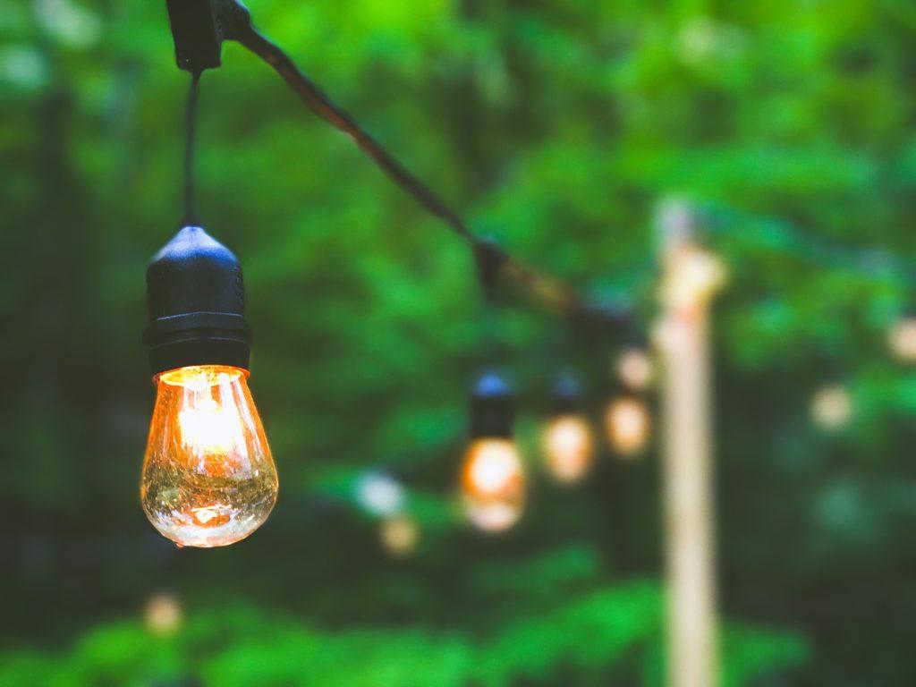 lighting garden trees